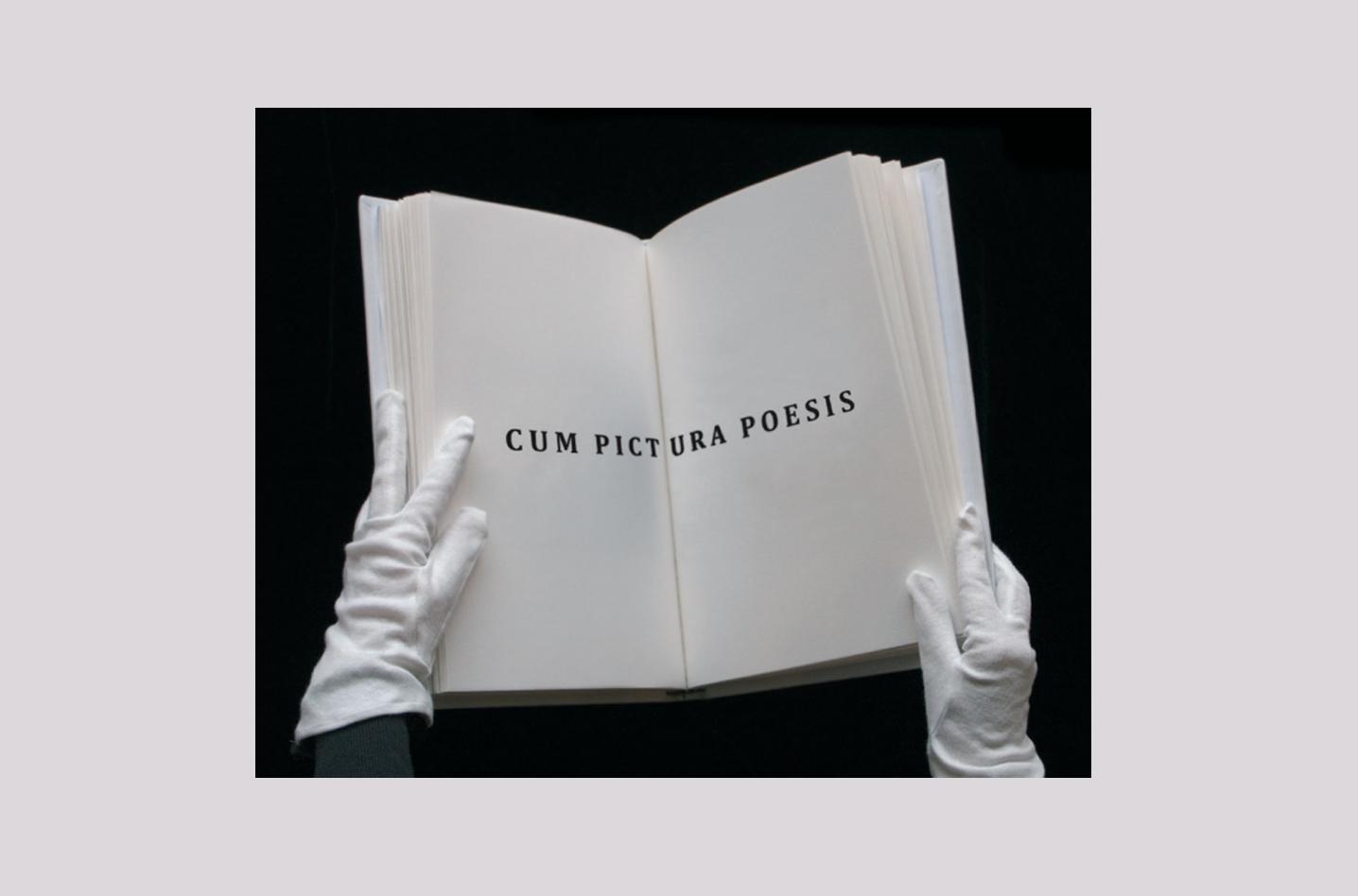 Catálogo, Catalog, Cum Pictura Poesis, Olga Simón, MEIAC, Museo Extremeño Iberoamericano, 2016,  Badajoz,  Michel Hubert, Libro de artista, Exposition, Exhibition, Art, Arte, Contemporary Art, Arte Contemporáneo, Jardín polar, Polar garden
