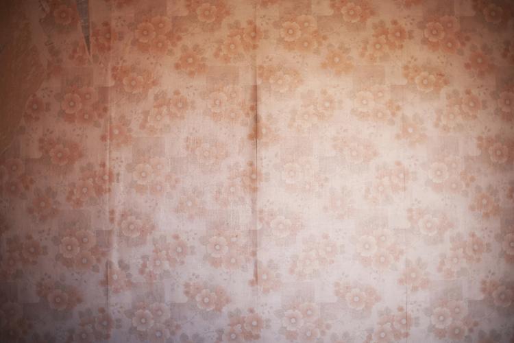 Empty house, Casa vacía, Olga Simón, art, arte, Wollstonecraft, Fernando Marías, Las Microlocas